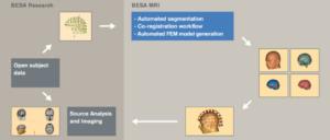 BESA MRI 3.0