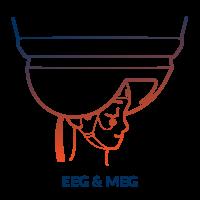 Brain Vision EEG _ MEG wText