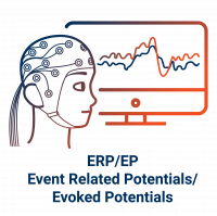 Brain Vision ERP wText