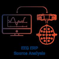 EEG ERP Source Analysis